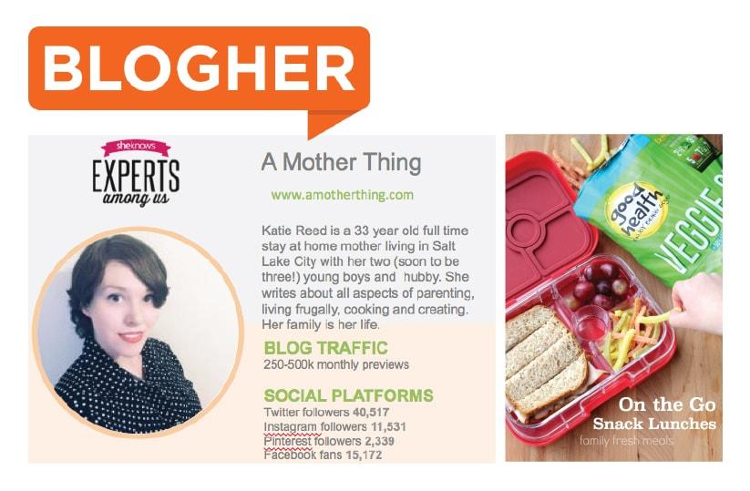 Screenshot of Blogher platform profile